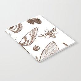 Natural History (Brown) Notebook