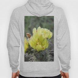 California Cactus Blooms Hoody