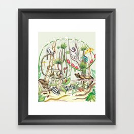 Endemic Species of Madagascar Framed Art Print