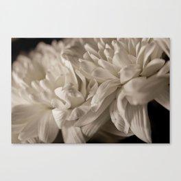 Delicate White Canvas Print