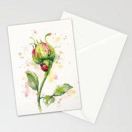Ladybug Lane Stationery Cards
