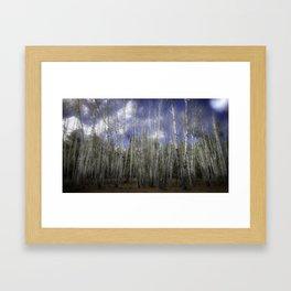 Aspen Framed Art Print