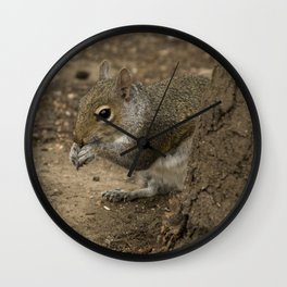 Woodland grey squirrel Wall Clock