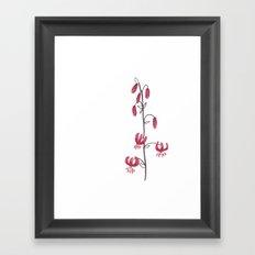 Lillium Martagon Red Flower Framed Art Print