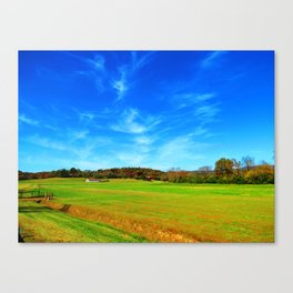 Fly Space Canvas Print