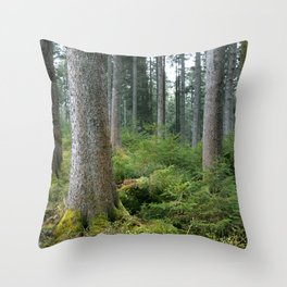 Between me and you. Throw Pillow