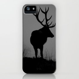 Wildlife, Monarch Of The Park iPhone Case