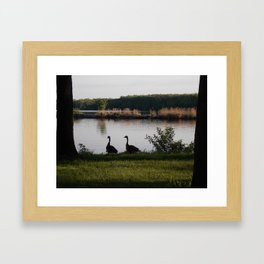 feathered friends Framed Art Print