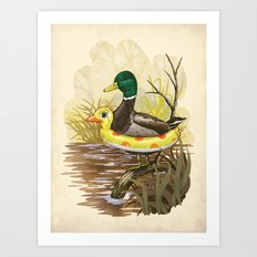 Duck in Training Art Print