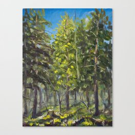 Sunny landscape in a spring forest oil painting on canvas. Artist Valery Rybakow Canvas Print