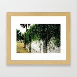 Ivy Wall Framed Art Print