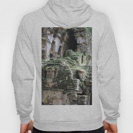 Mayan Ruins Hoody