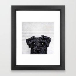 Black Schnauzer Dog illustration original painting print Framed Art Print
