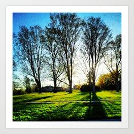 Springtime Trees  Art Print