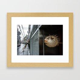 Blowfish Framed Art Print