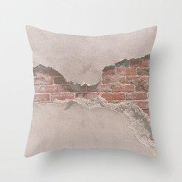 Revealed Throw Pillow