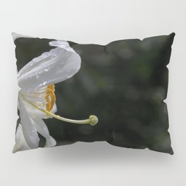 Raindrops on lily flower Pillow Sham