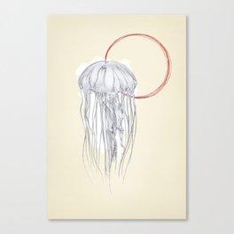 Jellyfish, Jelly Fish Canvas Print