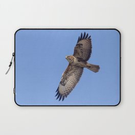 Common Buzzard (Buteo buteo) in flight Laptop Sleeve