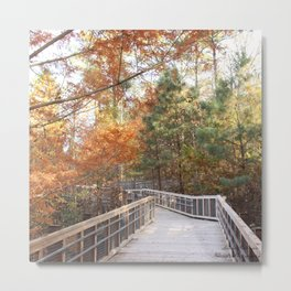 Wonderous Autumn Metal Print