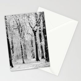 Snowy Beech Trees Stationery Cards