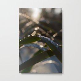 Drops in the sun Metal Print