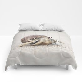 Life & times of a Hermit Crab Comforters