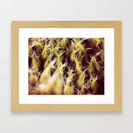 Frizzy Framed Art Print