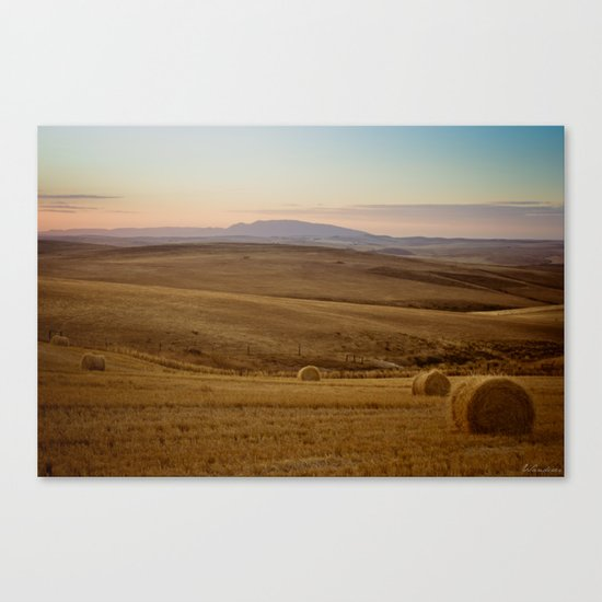 Wheat fields of the Overberg  Canvas Print