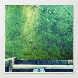 Swamp melancholy Canvas Print