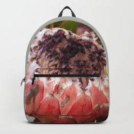 Feather Protea Backpack