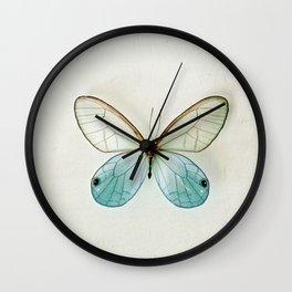 Blue Gold Glasswing Wall Clock