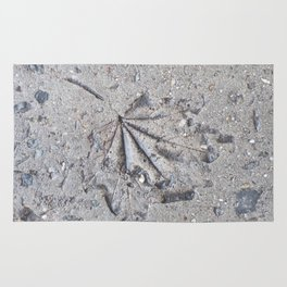 """""""Sidewalk Fossil"""" Rug"""
