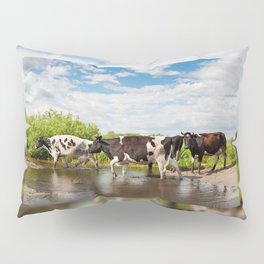 Herd of cows walking across pool Pillow Sham