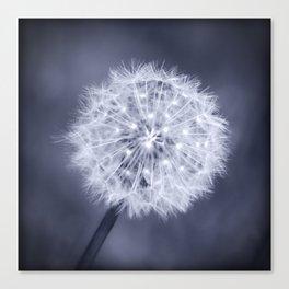 Wish - Dandelion in Black and White Canvas Print