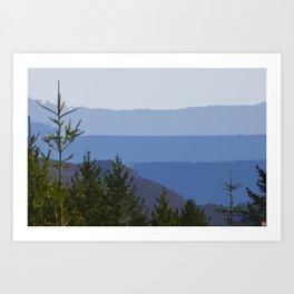 Dipsea Trail Art Print