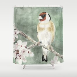 Goldfinch in blossom on green Shower Curtain