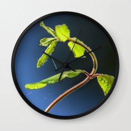 Following the light Wall Clock