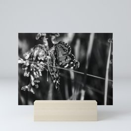 American Lady Butterfly in Black and White Mini Art Print