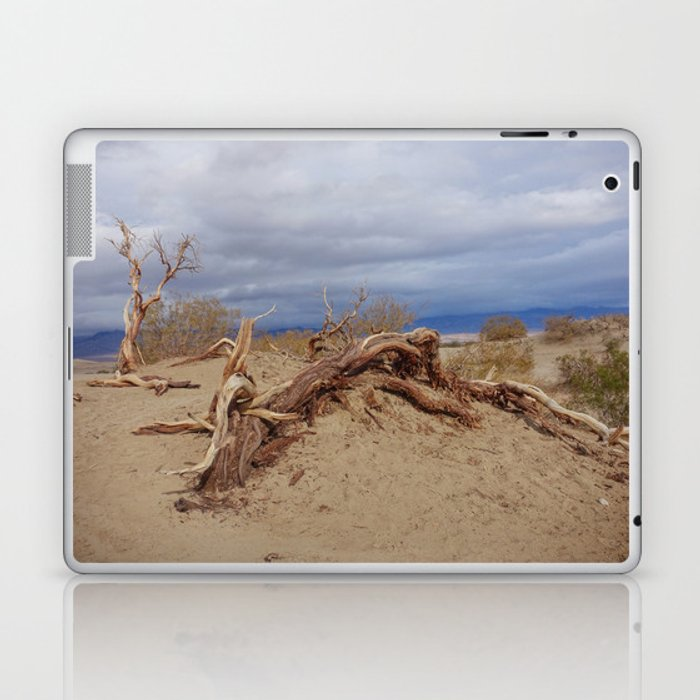 Death Valley II Laptop & iPad Skin