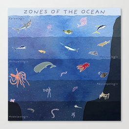 Zones of the Ocean Canvas Print