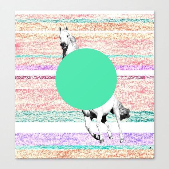 Horse, horse. Canvas Print