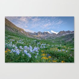 COLORADO HIGH COUNTRY MOUNTAIN SUMMER WILDFLOWERS LANDSCAPE PHOTOGRAPHY Canvas Print