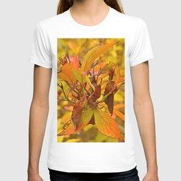 Autumn colour T-shirt