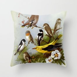 Pied Flycatcher Red breasted Flycatcher Waxwing Collared Flycatcher Spotted Flycatcher Golden Oriole Brown Flycatcher6 Throw Pillow