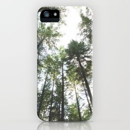Looking up at the Pine Trees iPhone Case