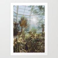 Conservatory Art Print
