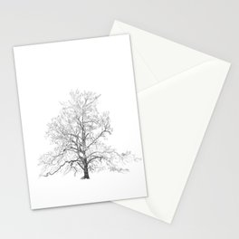 Sycamore Tree Stationery Cards