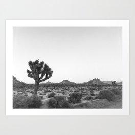 JOSHUA TREE / California Desert Art Print