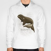 biology Hoodies featuring North Atlantic Right Whale by Amber Marine